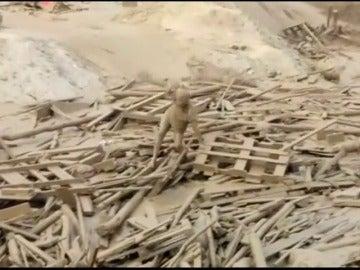 Frame 11.226345 de: Una mujer logra escapar del lodo en una ríada en Perú