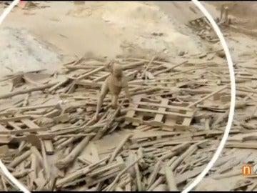 Frame 27.401111 de:  Más de 60 muertos por las riadas e inundaciones en Perú