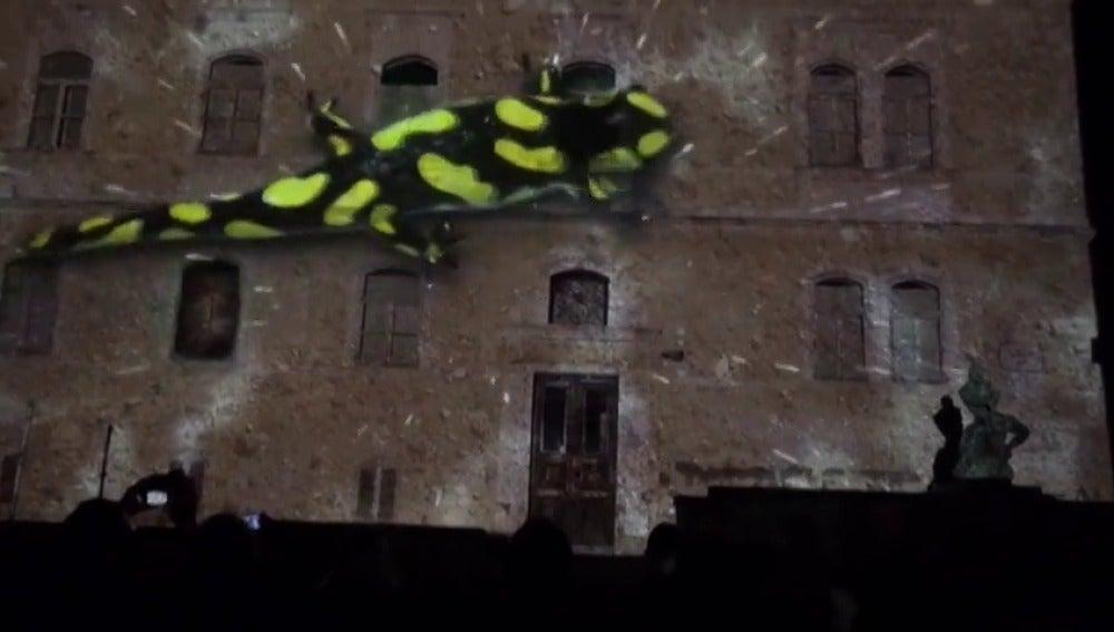 Frame 9.033815 de: El Festival de luces llena de magia el casco histórico de Zagreb
