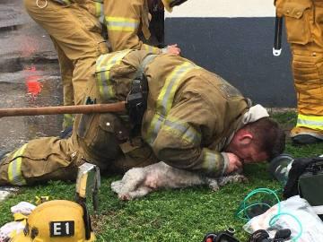 El bombero practicándole el boba a boca
