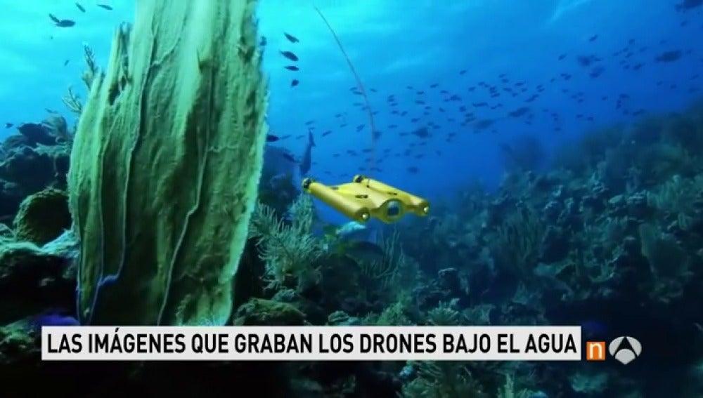 Los drones ya graban el fondo del mar espectaculares im genes del mundo submarino antena 3 tv - Fotos fondo del mar ...