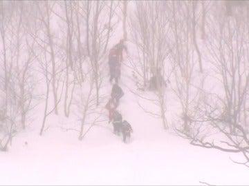Frame 9.338675 de: Al menos 8 adolescentes fallecidos por una avalancha de nieve en Japón