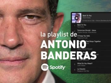 Disfruta de la playlist de Spotify al completo del programa de Antonio Banderas en 'El árbol de tu vida'