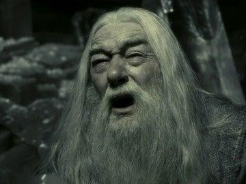 Dumbledore también sufre