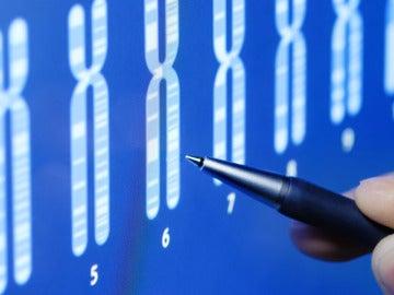 Test de incompatibilidad genetica