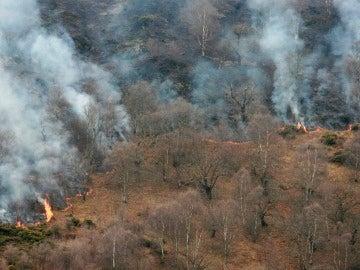 Incendio forestal en Asturias