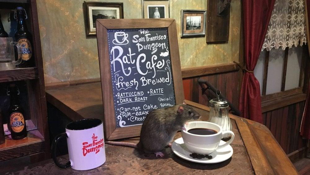Abren una cafetería donde podrás tomar algo mientras ratas corretean a tu alrededor