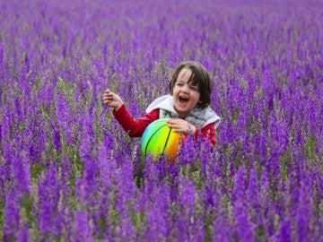 Juegos entre flores (31-05-2017)