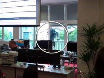 Frame 9.286707 de: La broma pesada de un jefe a sus trabajadores como celebración a los buenos resultados empresariales