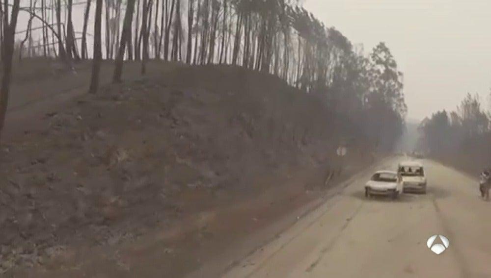 La lucha contra el incendio luso se reparte entre los municipios de Góis y Pedrógão Grande