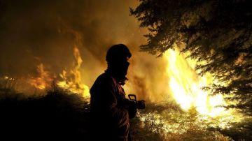 Bomberos de Madrid ayudan a extinguir el fuego en Portugal