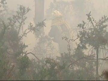 Provocan un incendio forestal al quemar una máquina de tabaco en mitad de un bosque