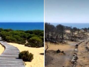 El antes y el después de Doñana tras el incendio de Huelva