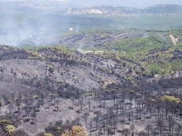 Estabilizado el incendio de Riotinto (Huelva) 29 horas después de declararse