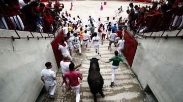 Los toros de Núñez del Cuvillo entran en la plaza en el séptimo encierro de San Fermín