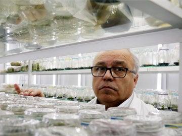 El investigador Gustavo Zúñiga de la Universidad de Santiago de Chile