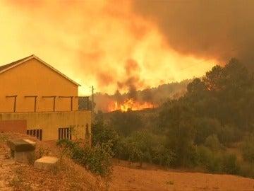 Miles de evacuados por incendios en la Costa Azul