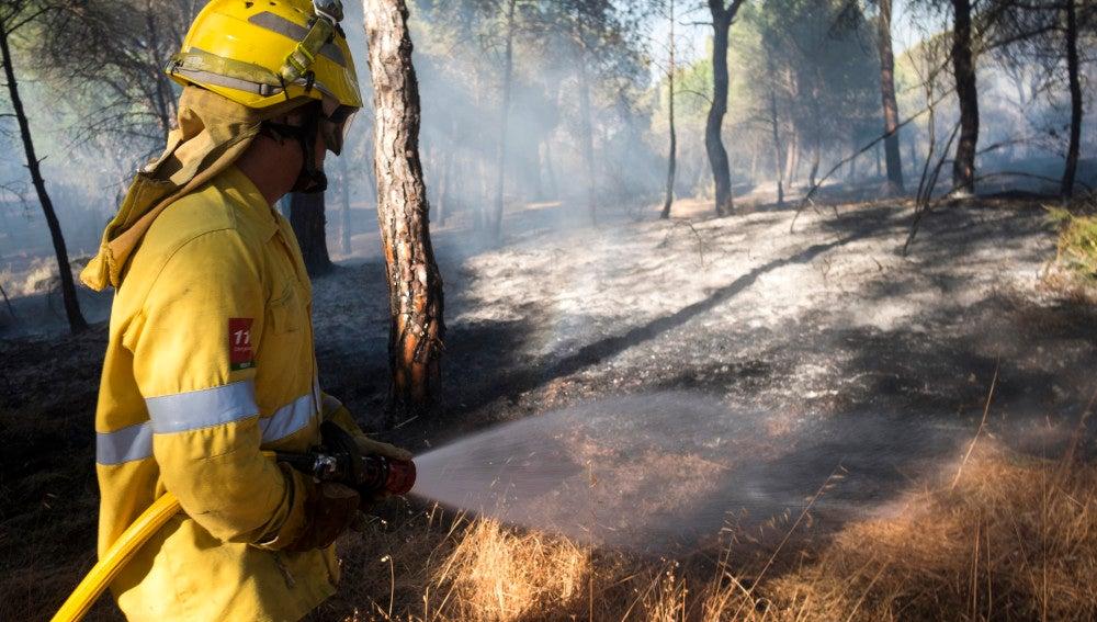 Estabilizado el incendio forestal que afecta a Guadalcanal (Sevilla)