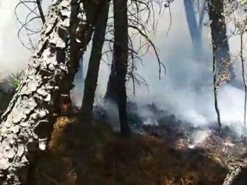 En los primeros 7 meses se registran 8.787 incendios y 62.762 hectáreas calcinadas