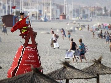 Playas de Cádiz cerradas por la presencia de un tiburón