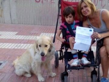 Perro-alerta junto a un paciente con epilepsia