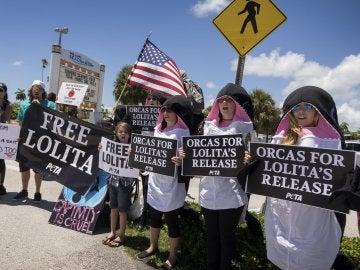 Varios manifestantes protestan junto al Seaquarium de Miami para pedir que liberen a la orca Lolita