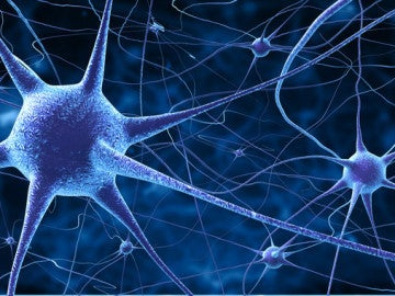 El grupo de neuronas que detecta la musica de las palabras