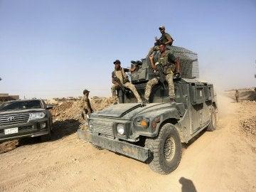 Las fuerzas iraquíes arrebatan a Daesh el 70% de la localidad de Tal Afar