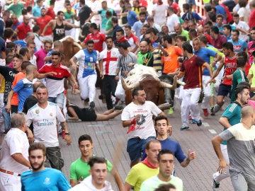 Primer encierro de las fiestas de San Sebastián de los Reyes 2017, con reses de Núñez del Cubillo