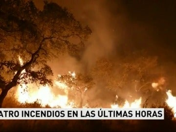 Los bomberos siguen refrescando La Granada de Riotinto después de el fuego arrasara un paraje de alto valor ecólogico