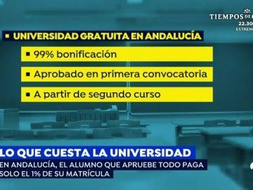 El alumno que apruebe todo en Andalucía pagará el 1% de su matrícula en la universidad