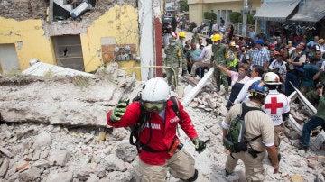 Buscan supervivientes entre los escombros