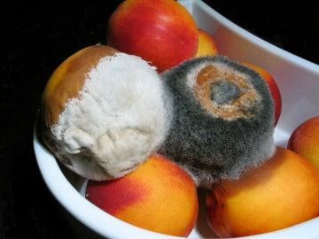 Cuando aparezca moho en la fruta, ¿hay que tirarla o no?