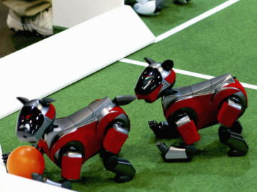 Robots mascota juegan con una pelota