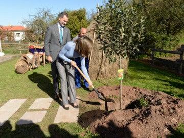 Los Reyes plantan un árbol en Poreñu