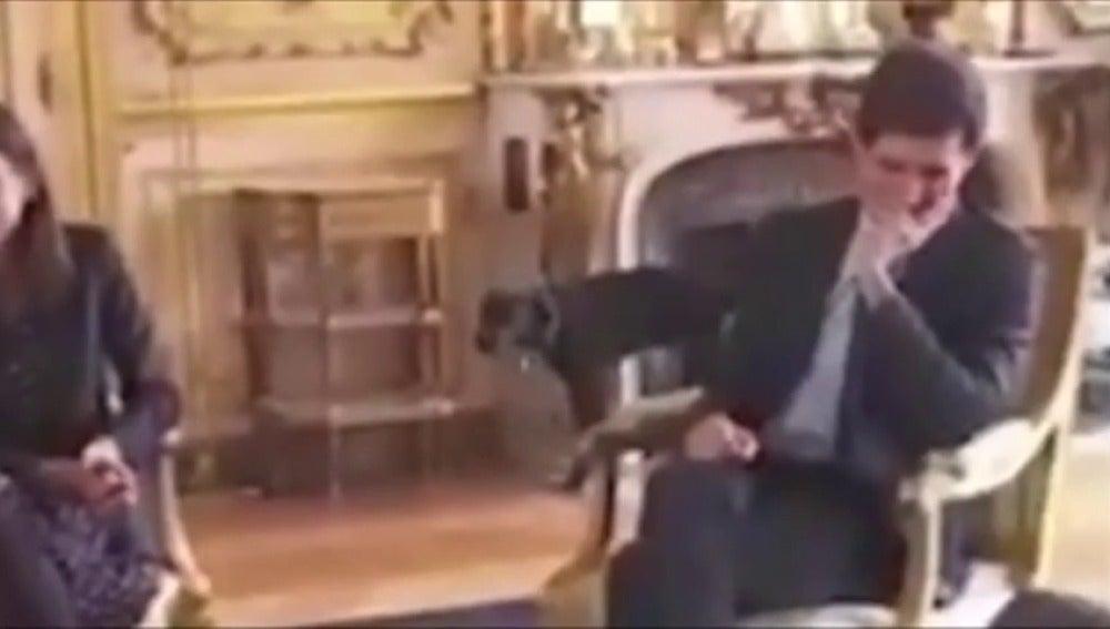 Graban a Nemo, el perro de Macron, orinando en la chimenea durante una reunión en el Elíseo