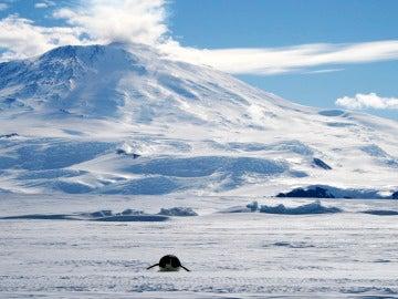 La ESA busca médico para llevar a cabo investigaciones en la Antártida para preparar misiones a Marte