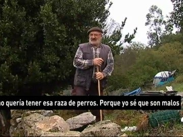 ABUELA GALICIA PERROS