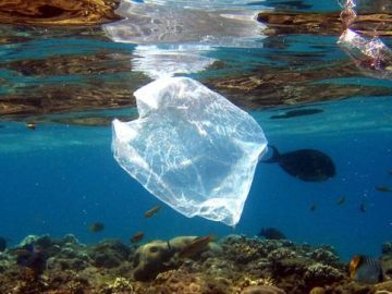 Residuos de plástico en el mar (Archivo)