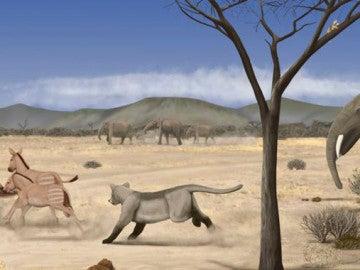 Madrid estaba ocupado por una árida sabana hace 14 millones de años
