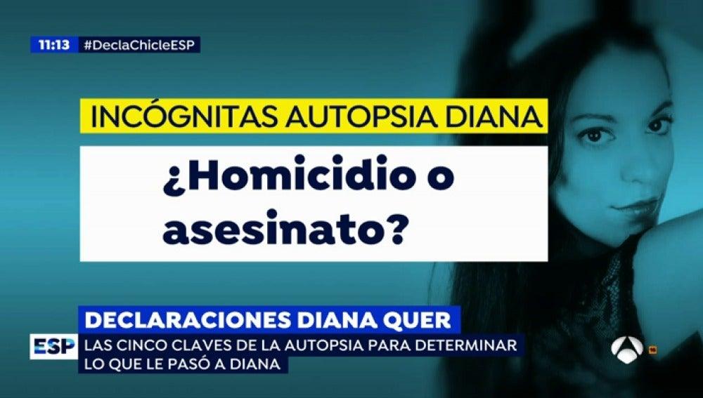 Antena 3 tv las cinco claves de la autopsia de diana for Espejo publico diana quer