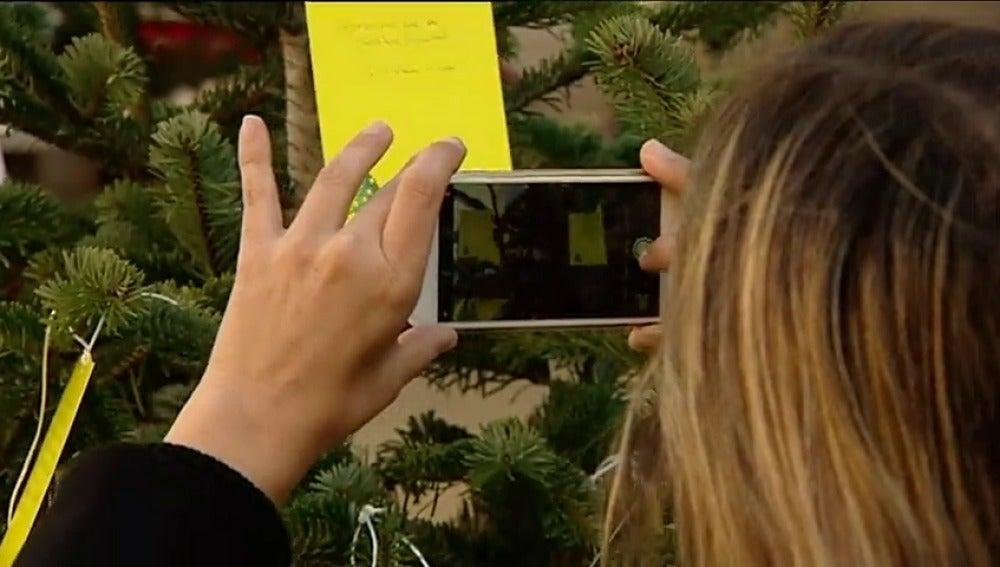 Òmnium habilita 'árboles amarillos' para apoyar a Junqueras