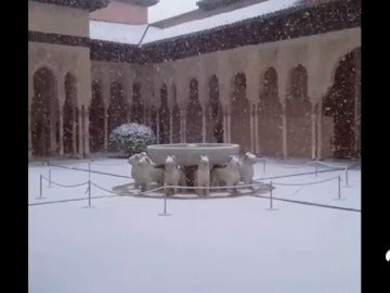 La Alhambra de Granada, cubierta de nieve