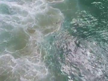 Un dron salva a dos chicos de ahogarse en una playa en Australia