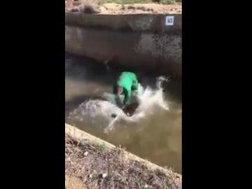 El hombre ahogando al jabalí