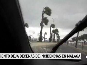 Herida una ciclista de 67 años tras ser arrastrada por el viento en el paseo marítimo de Málaga
