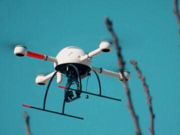 Drones para un cultivo eficiente