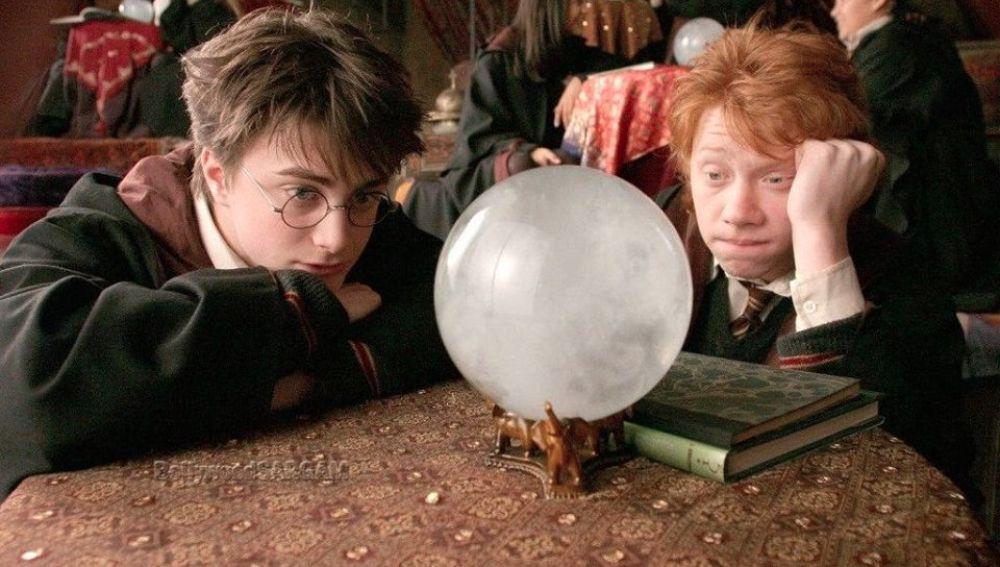 Harry Potter y Ron Weasley prediciendo a lo loco