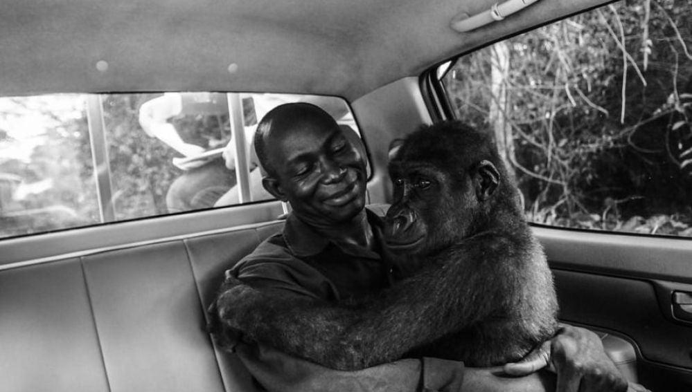 Imagen ganadora del concurso 'Wildlife Photographer of the Year People's Choice'