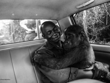 Imagen ganadora del concurso 'Wildlife Photographer of the Year People's Choice'